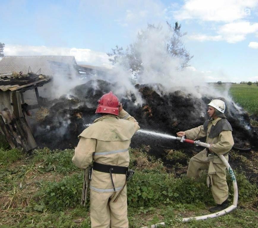 Горностаївські вогнеборці загасили скирту соломи  , фото-1