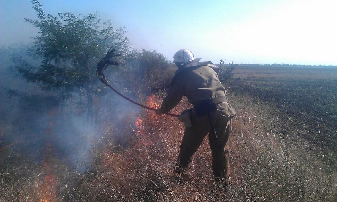 На Херсонщині горіла суха трава, фото-1