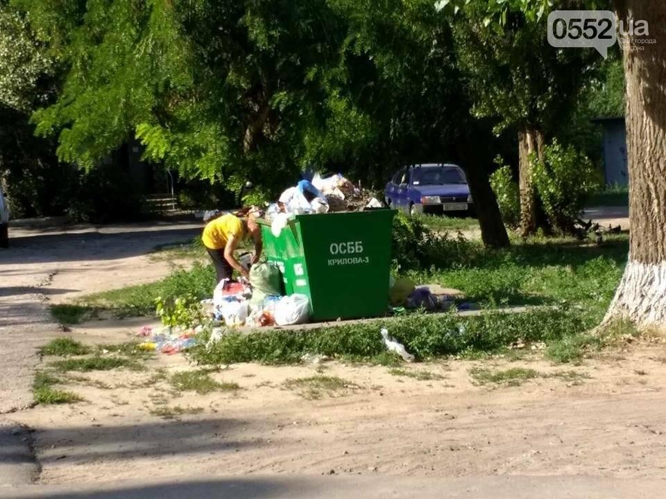 На Херсонщине назревает мусорный коллапс?, фото-2