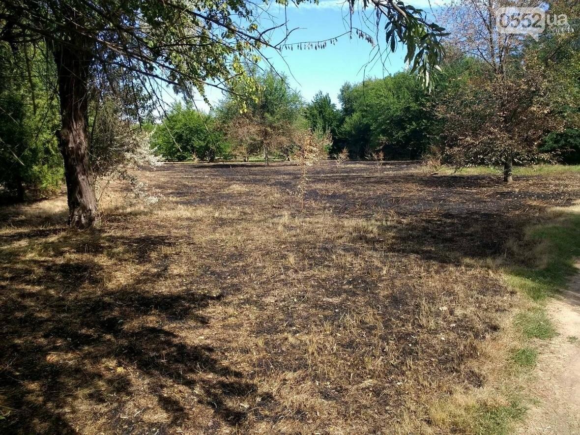 В парке у Херсонского НТУ горела трава, фото-2