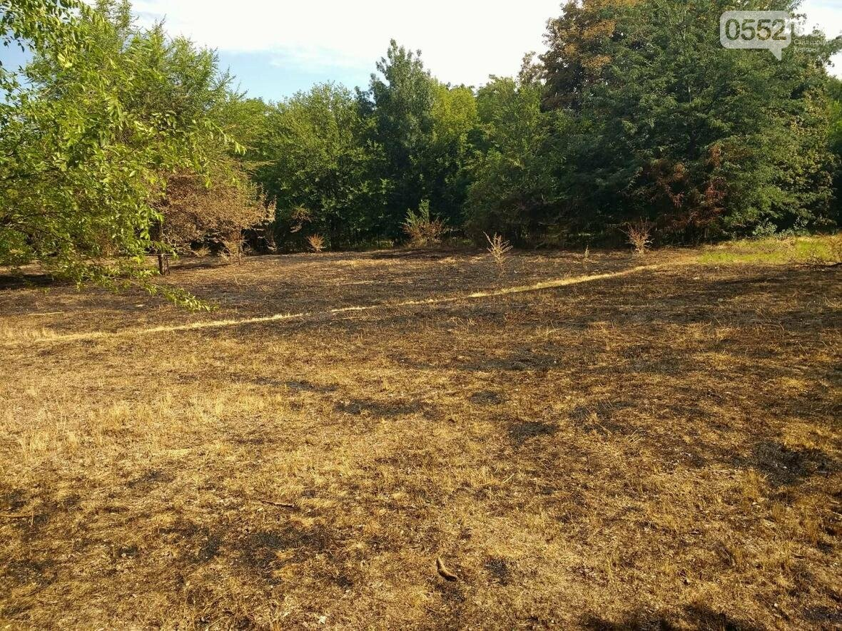 В парке у Херсонского НТУ горела трава, фото-3
