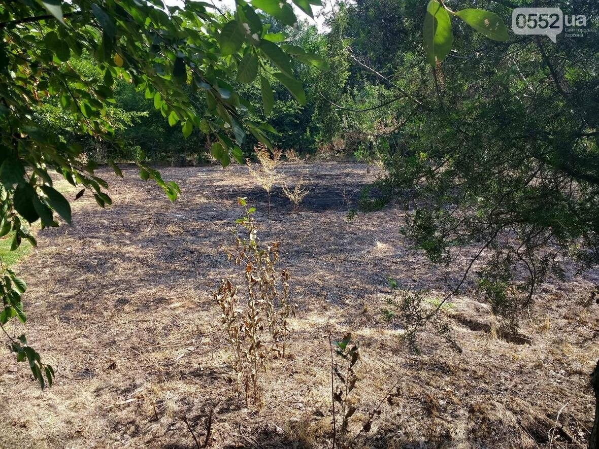 В парке у Херсонского НТУ горела трава, фото-1