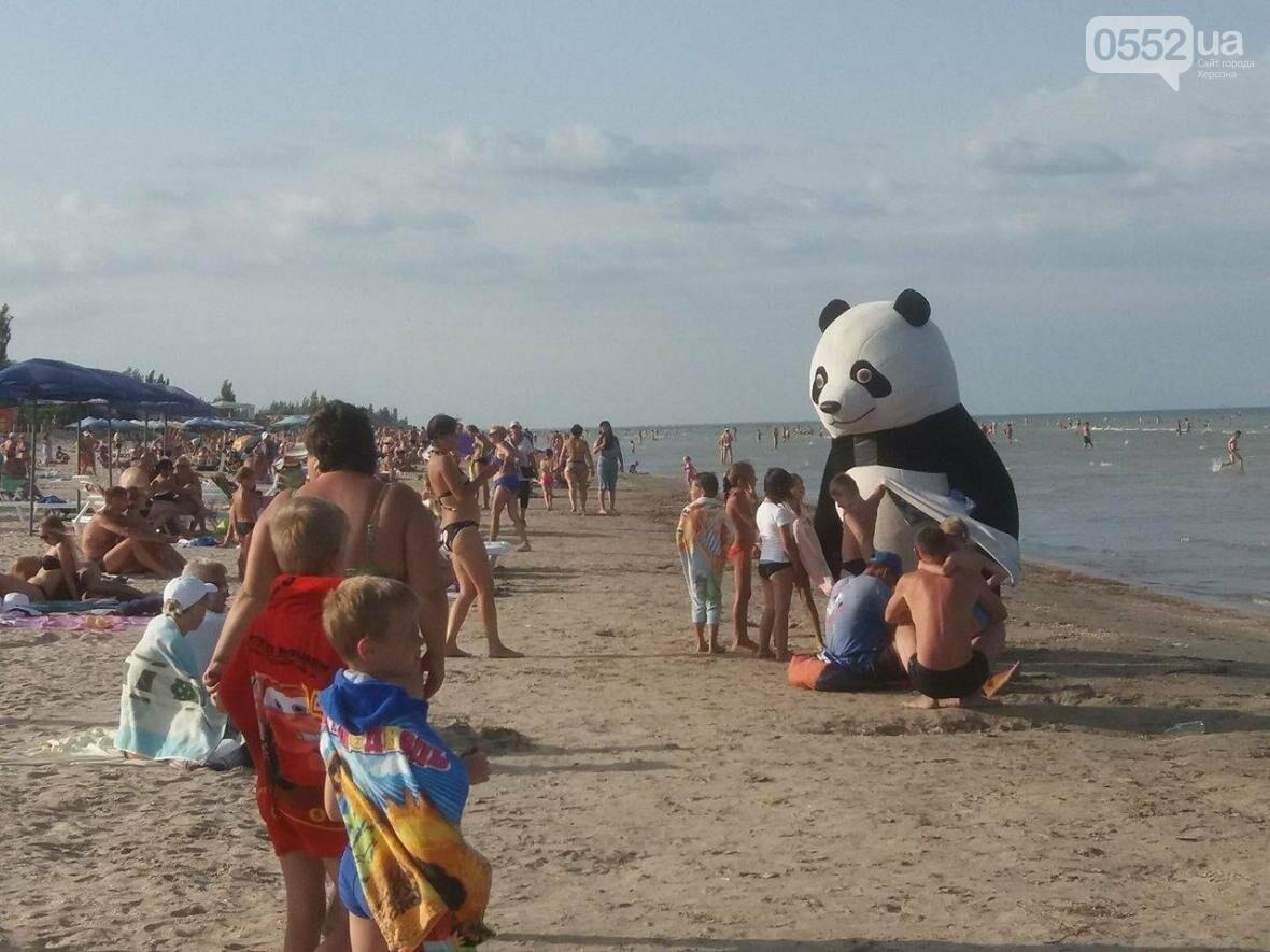 На Азовском побережье замечена Панда, фото-1