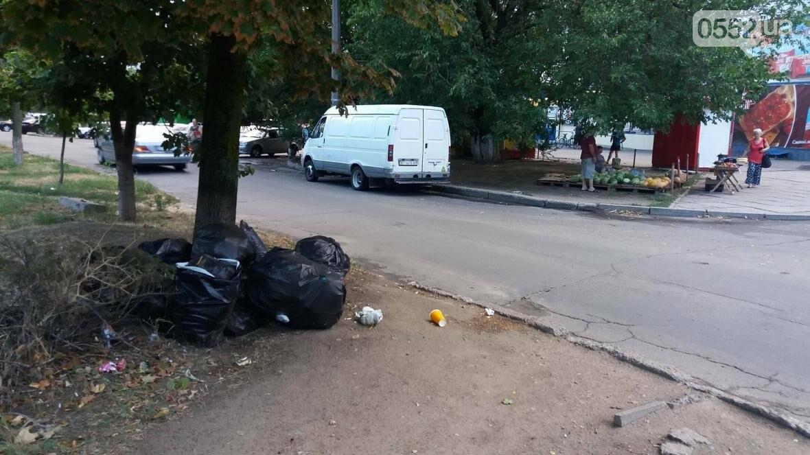 В Херсоне мусор складируют на зеленой зоне, фото-1