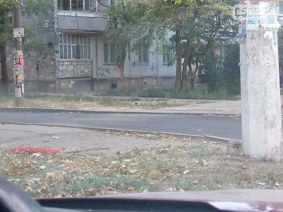 В Херсоне продолжают  благоустраивать придомовые территории, фото-1
