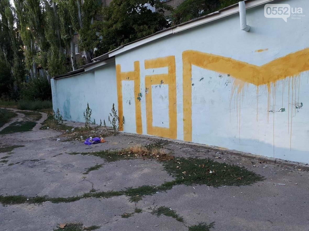 Херсон утопает в мусоре, фото-4