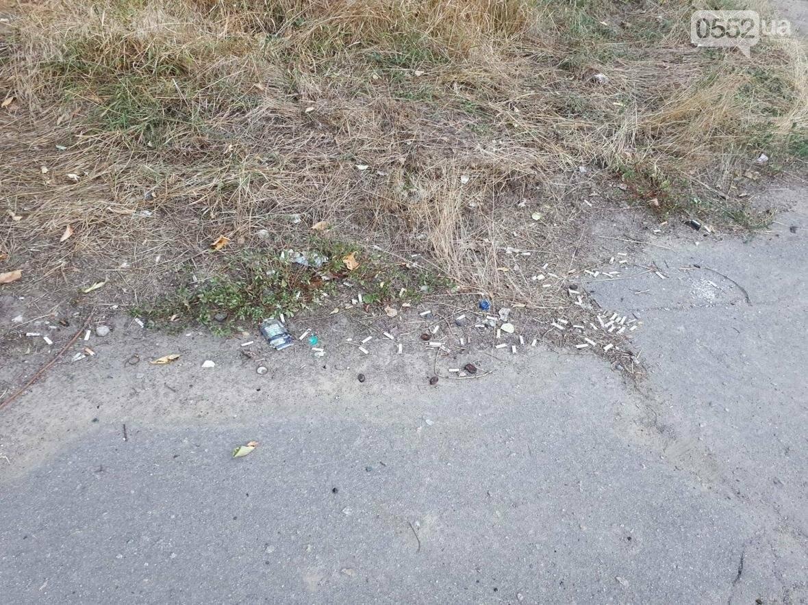 Херсон утопает в мусоре, фото-1
