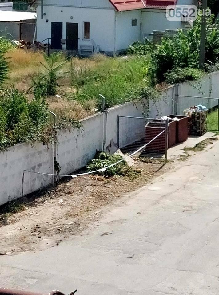 """На Херсонщине """"кто-то нагло пытается подкинуть мусор"""" , фото-4"""