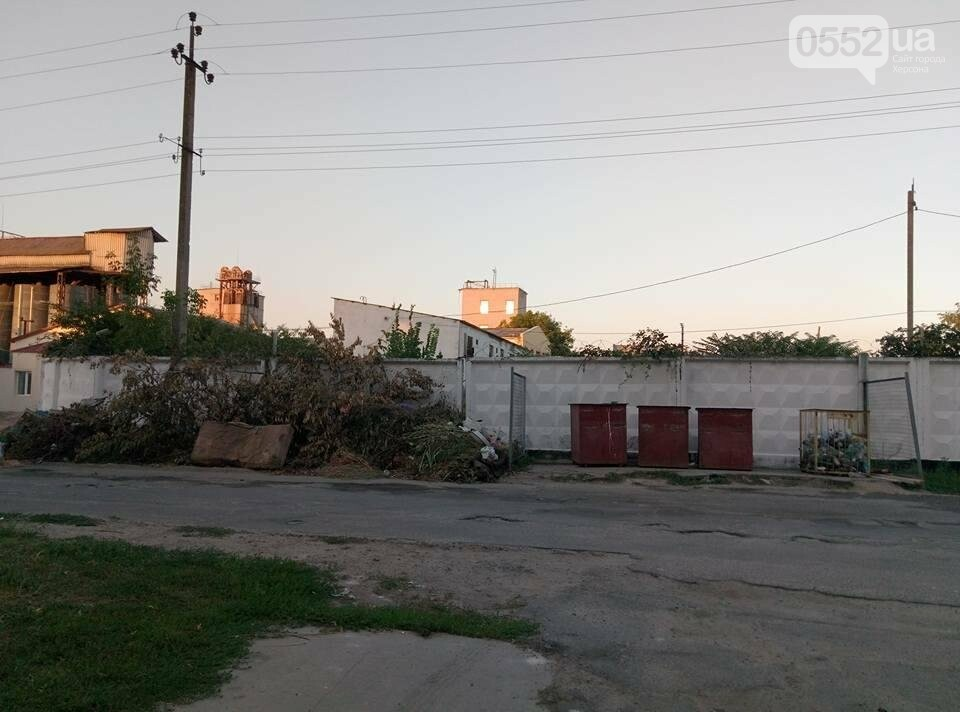"""На Херсонщине """"кто-то нагло пытается подкинуть мусор"""" , фото-1"""