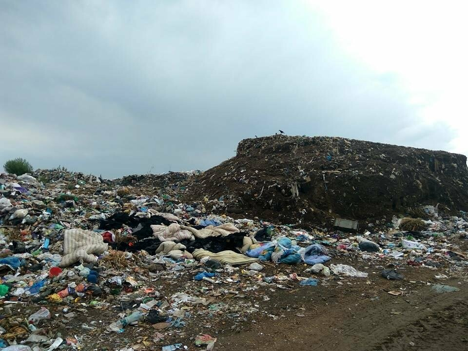 Незаконный бизнес на херсонском мусоре, фото-5