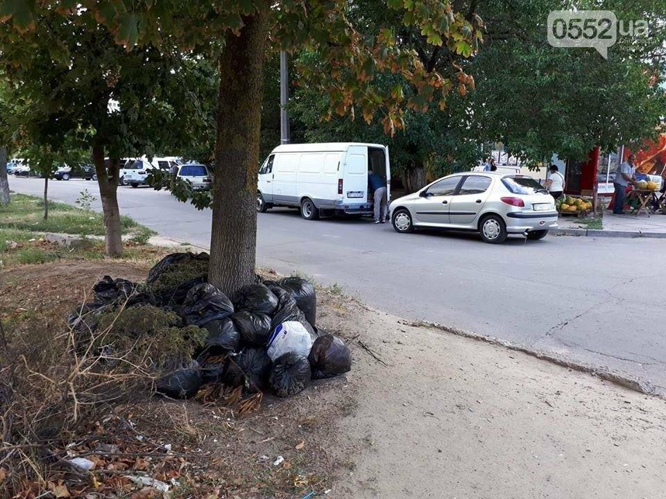 Херсонцы сносят мусор на обочины (фото), фото-3