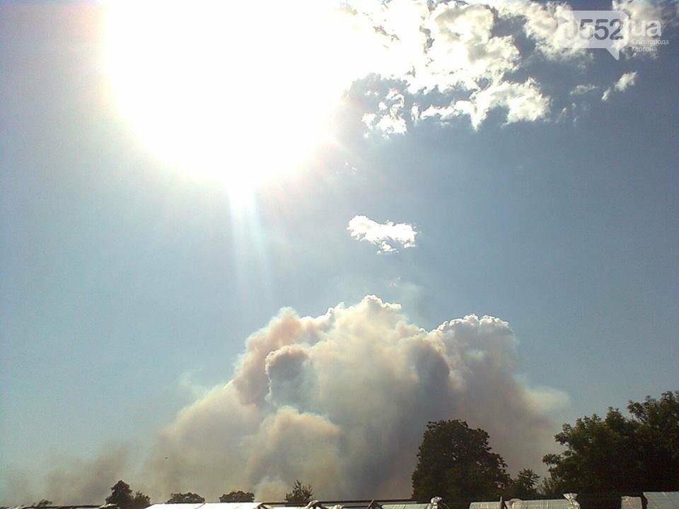 Очередной лесной пожар на Херсонщине, фото-1