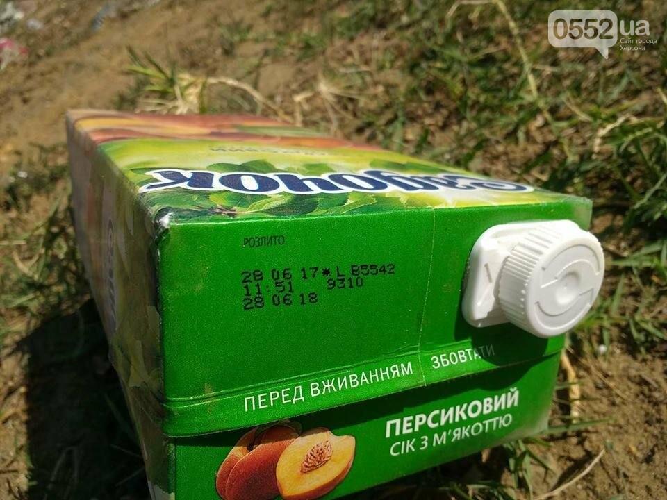 """На Херсонщине назревает новая """"мусорная"""" проблема?, фото-4"""