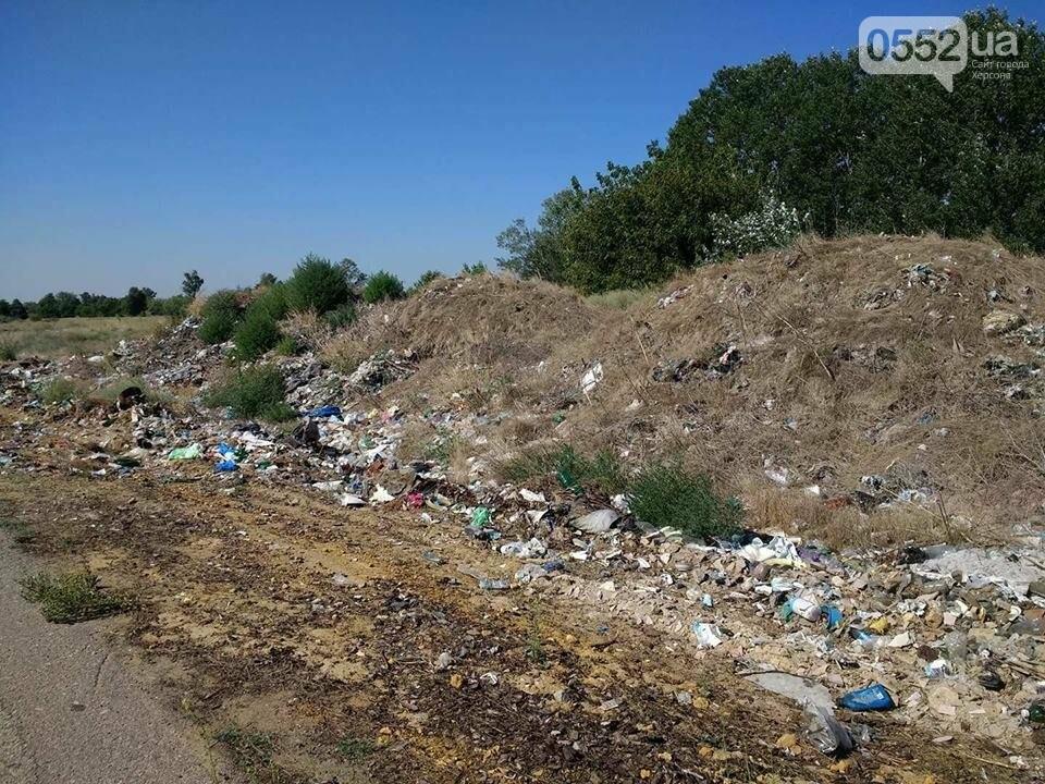 """На Херсонщине назревает новая """"мусорная"""" проблема?, фото-6"""
