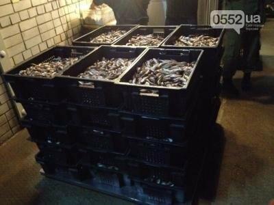 Прикордонники спільно з поліцією та рибоохороною виявили 2 тонни незаконного вилову, фото-1