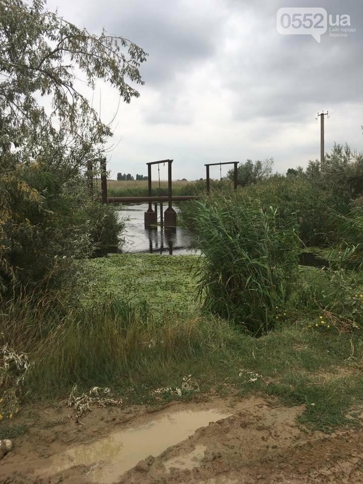 Херсонці звинувачують Водоканал у забрудненні ріки, фото-2