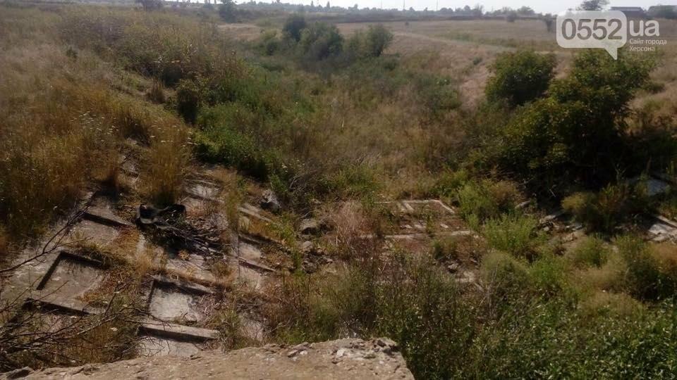 Херсонці звинувачують Водоканал у забрудненні ріки, фото-3