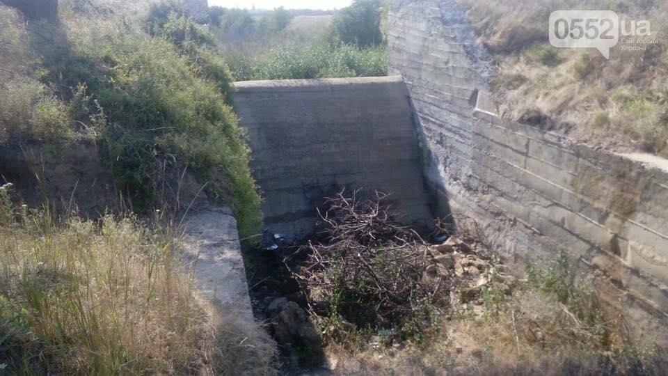 Херсонці звинувачують Водоканал у забрудненні ріки, фото-4