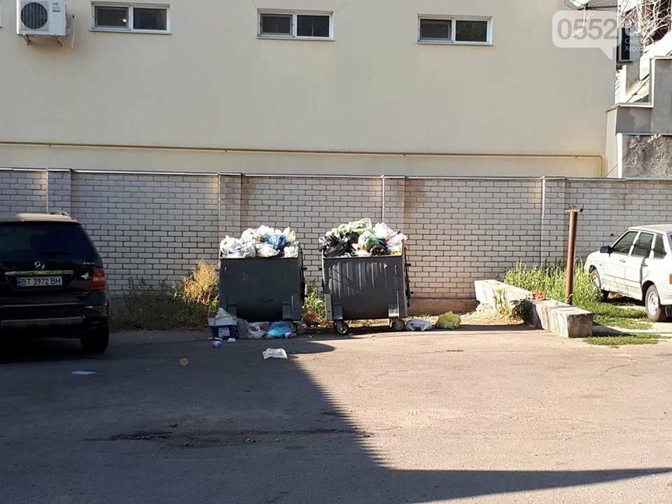 Центр Херсона утопает в мусоре, фото-2