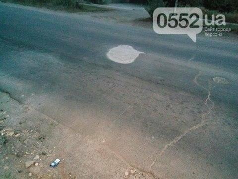 Херсонцы сами ремонтируют дороги (фото), фото-1