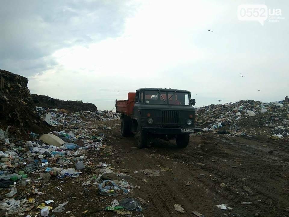 """""""Итака"""" признает факт незаконной сортировки мусора на херсонской свалке, фото-1"""