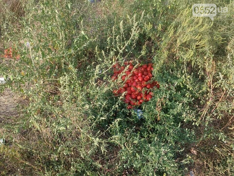 На Херсонщине пустырь превратился в стихийную свалку (фото), фото-2