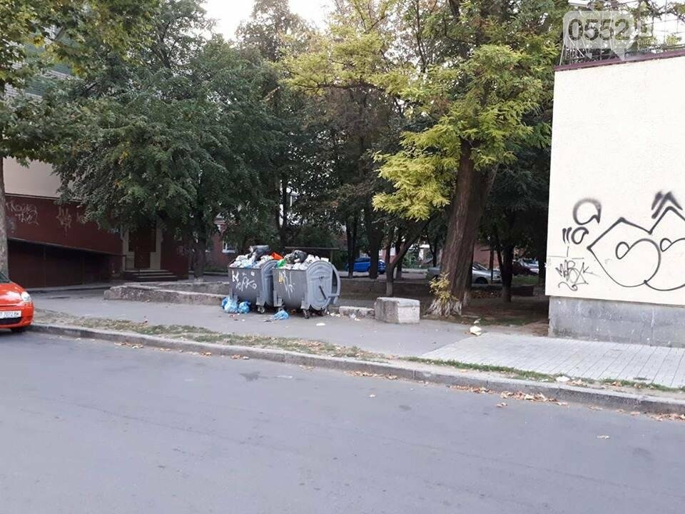 Горы мусора и разбитый асфальт - реалии херсонского двора, фото-1