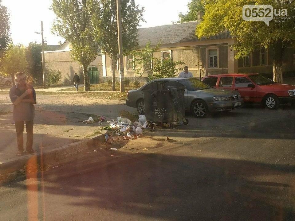 В Херсоне мусор выбрасывают на проезжую часть, фото-1