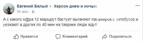 Херсонские маршрутчики объявили забастовку, - соцсети, фото-2