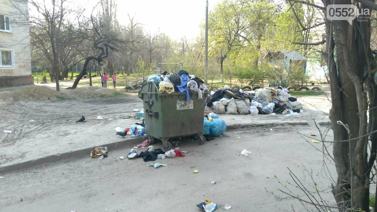 В Херсоне двор утопает в мусоре (фото), фото-1