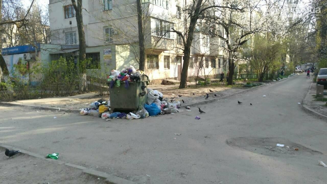 В Херсоне двор утопает в мусоре (фото), фото-2