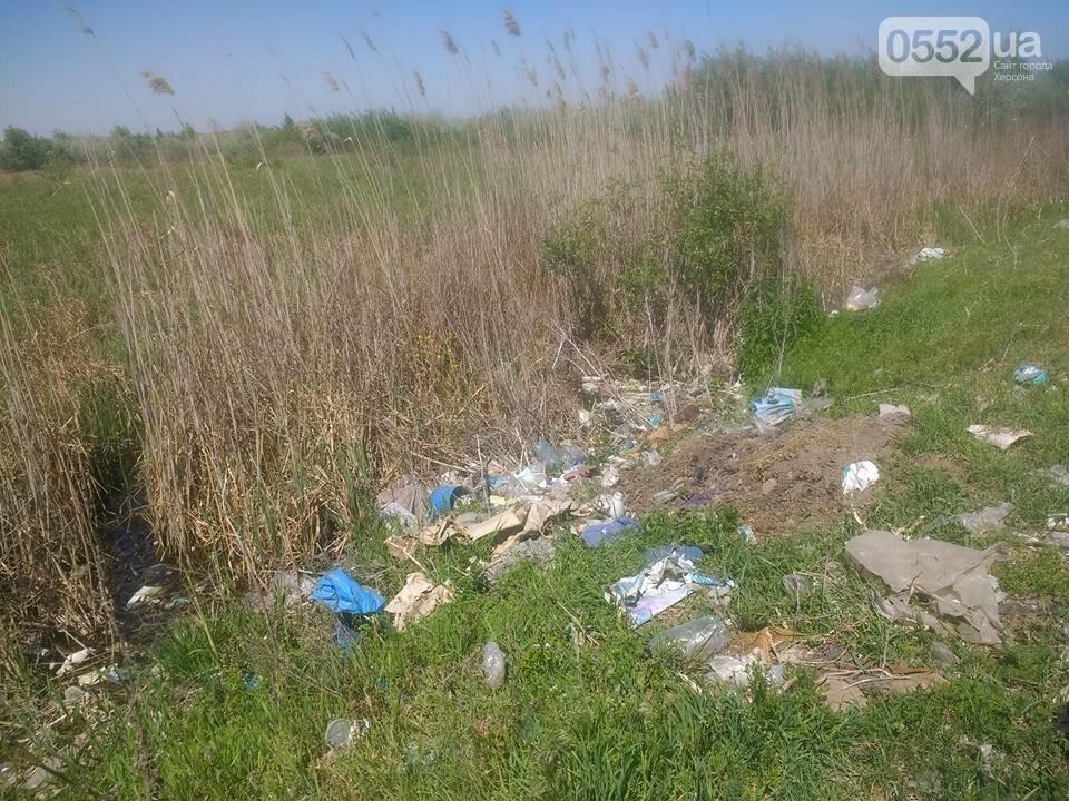 """Как жители райцентра Херсонщины """"заботятся"""" о своем городе (фото), фото-4"""