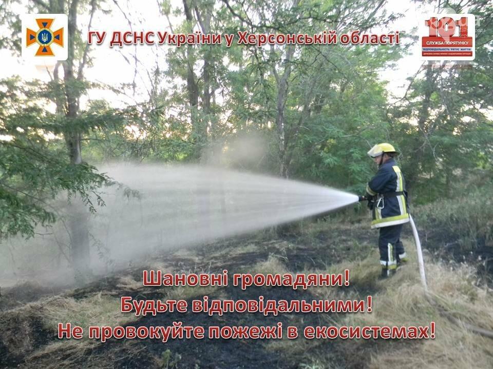 На Херсонщине только за сутки 15 раз горели сухостой и мусор, фото-1