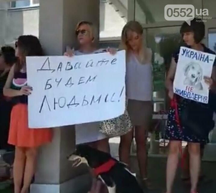 Херсонские зоозащитники провели акцию возле городского совета, фото-2