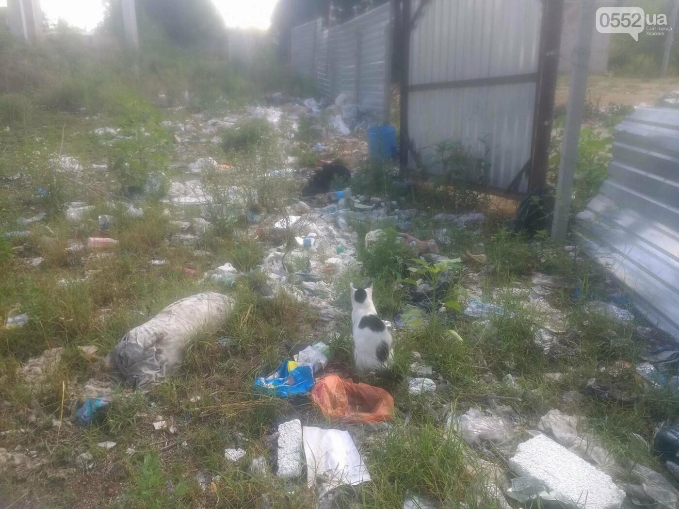 Центральная улица Олешек утопает в мусоре