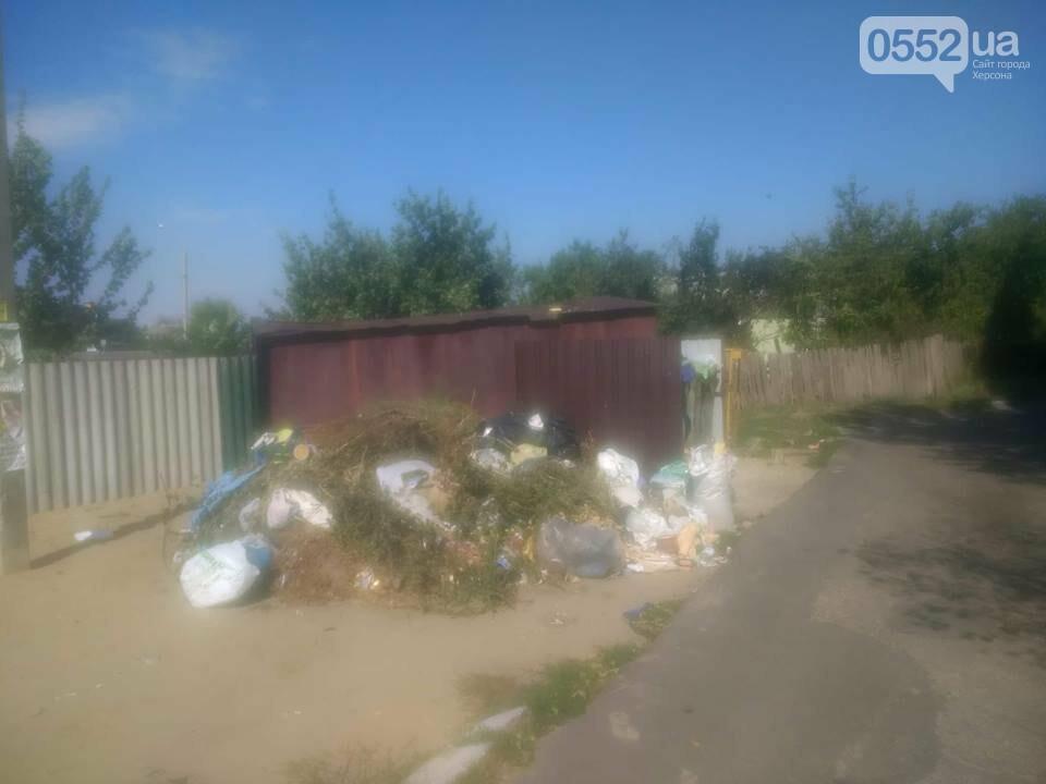 В райцентре Херсонщине не знают о регулярном вывозе мусора, фото-1