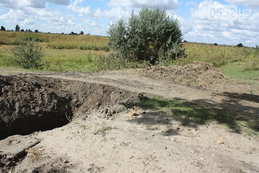 На Херсонщине плавни превратились в скотомогильник и свалку, фото-1