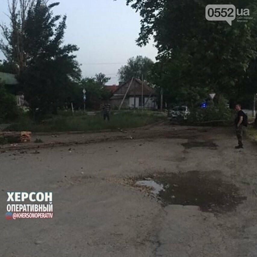 В Херсоне попавшую в ДТП иномарку сильным ударом выбросило на тротуар, фото-3