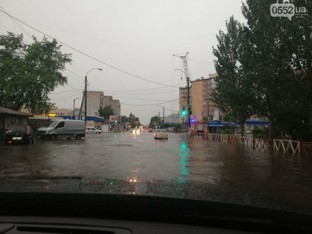 На Херсонщине ураганный ветер сорвал крыши с 50 домов и повалил свыше 100 деревьев, фото-4