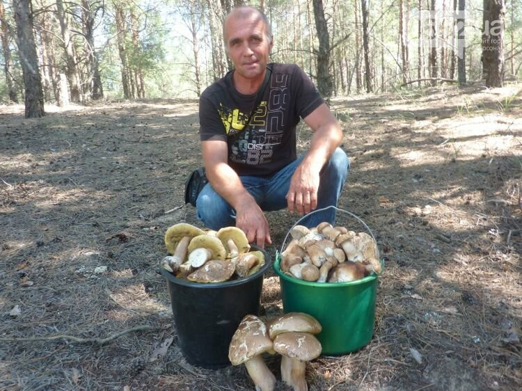 На Херсонщине белые грибы собирают ведрами: аномалию спровоцировал сезон летних дождей , фото-1