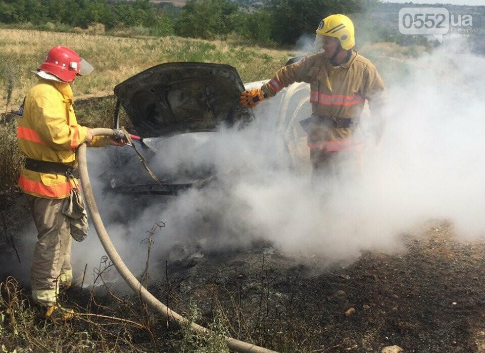 На Херсонщине машины вспыхивают, как факелы: за сутки пожарные дважды тушили иномарки, фото-3