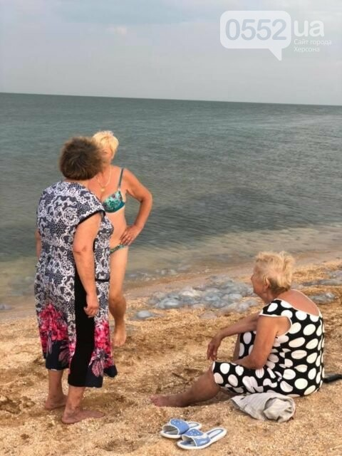 Шок для туристов: побережье Азовского моря на Херсонщине усеяно трупами медуз , фото-3