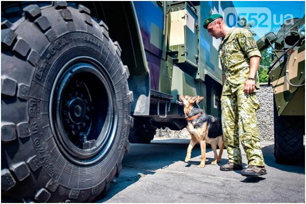 В Херсоне лучшие служебные собаки со всей области искали наркотики, взрывчатку и оружие, фото-1