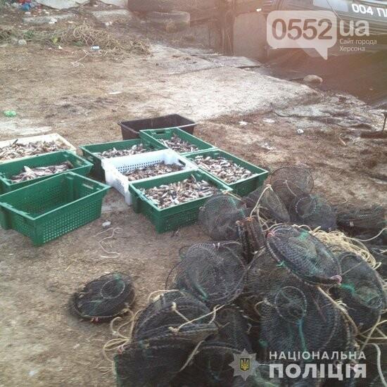 В Херсонской области браконьеры за одну ночь наловили морепродуктов на два миллиона гривен, фото-2