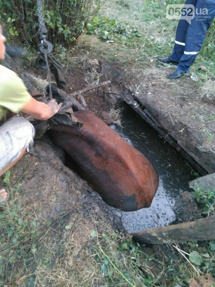 В Херсонской области спасли корову: буренка провалилась в сливную яму, фото-2