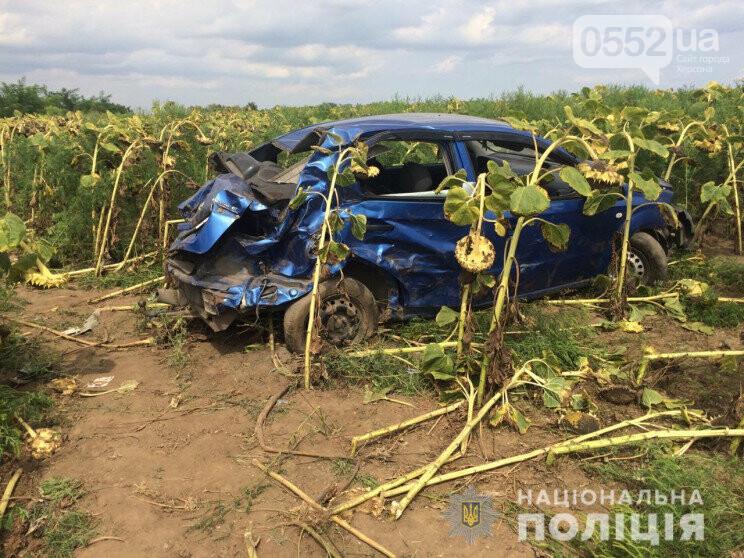 Жуткое ДТП под Херсоном: одна женщина погибла, еще два пассажира – в реанимации, фото-1
