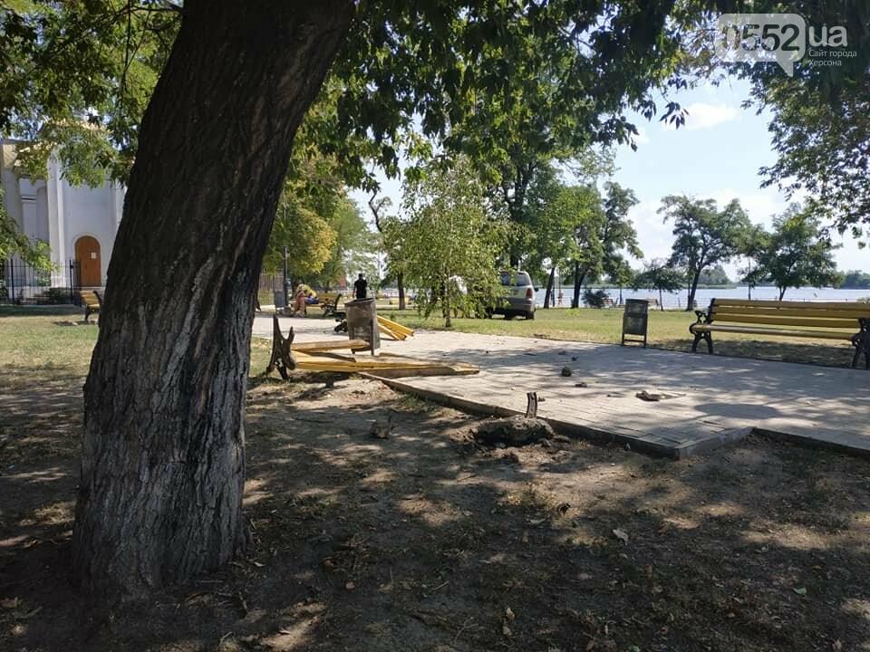 Житель Херсона попал в ДТП не вставая с лавочки: водитель снес скамейку и въехал в дерево, фото-2