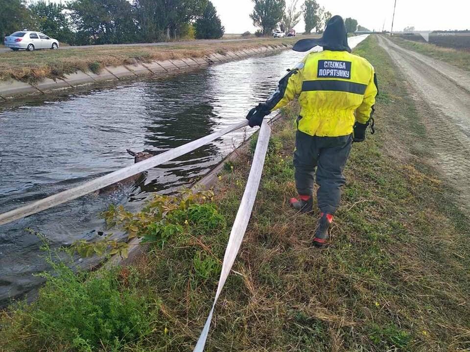 Косуля тонула в Каховском магистральном канале: люди пришли на помощь и спасли ей жизнь, фото-3