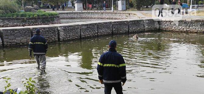 Люди спасли жизнь собаке в Новой Каховке: едва не утонула в водяной ловушке (ФОТОРЕПОРТАЖ), фото-1