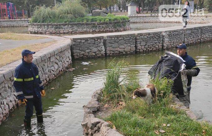 Люди спасли жизнь собаке в Новой Каховке: едва не утонула в водяной ловушке (ФОТОРЕПОРТАЖ), фото-3